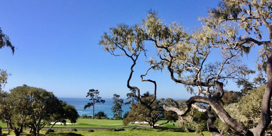 Pebble Beach 12th hole
